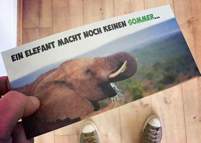 FreakPool – Werbung aus Krefeld – aussagekräftiger Flyer